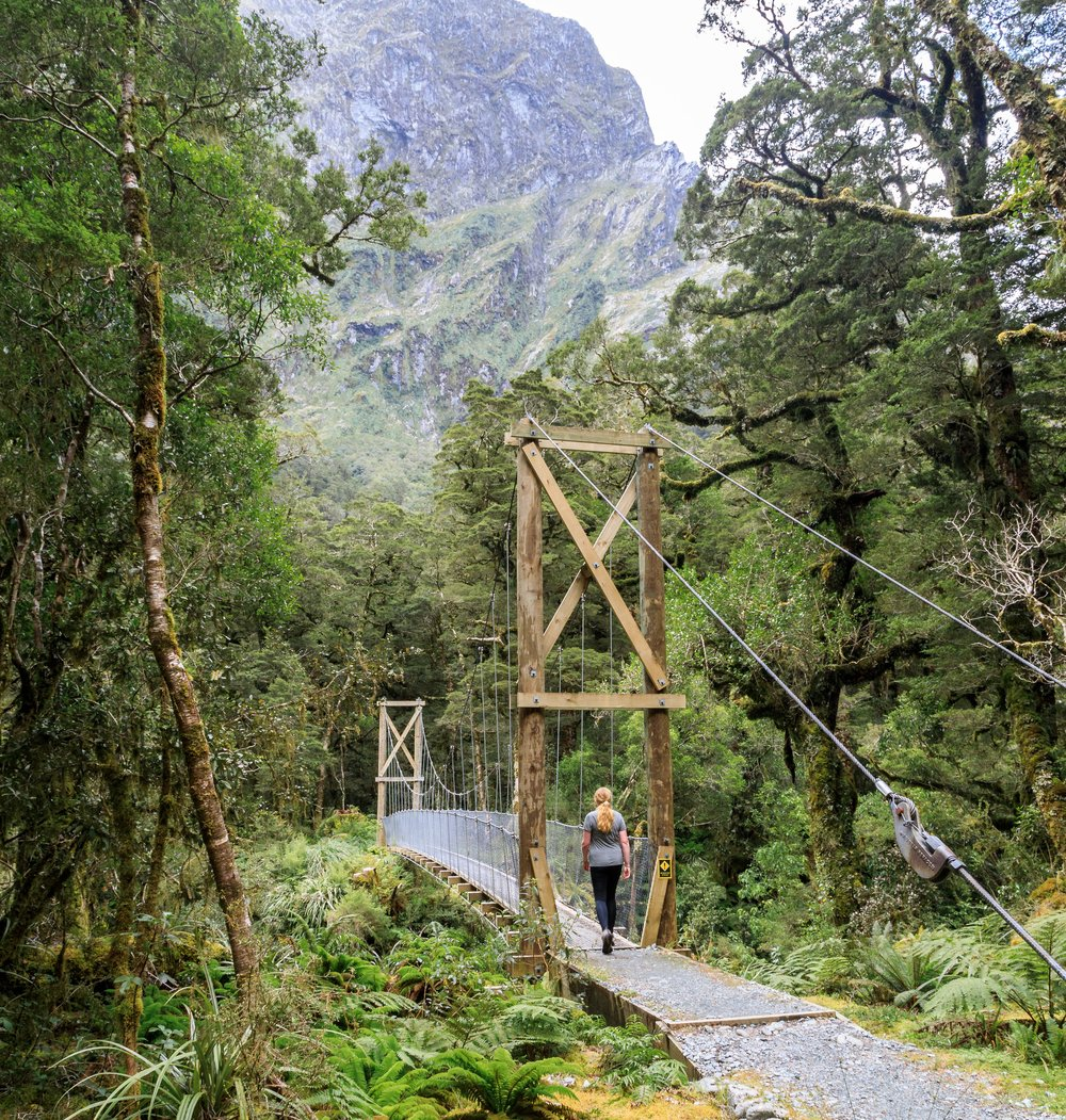 The bridge to Sutherland Falls, Milford Track