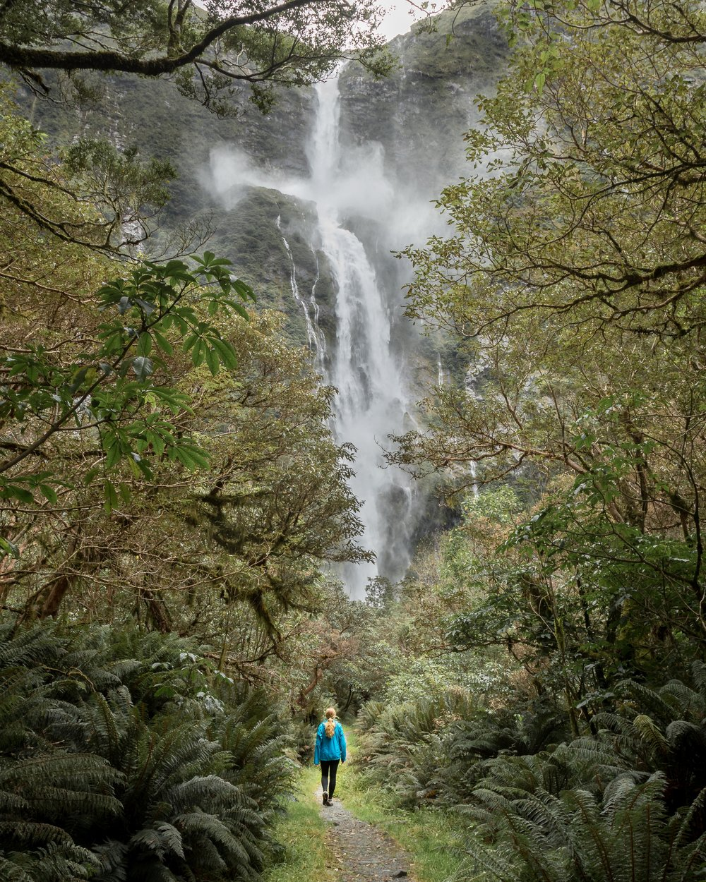 Sutherland Falls, The Milford Track