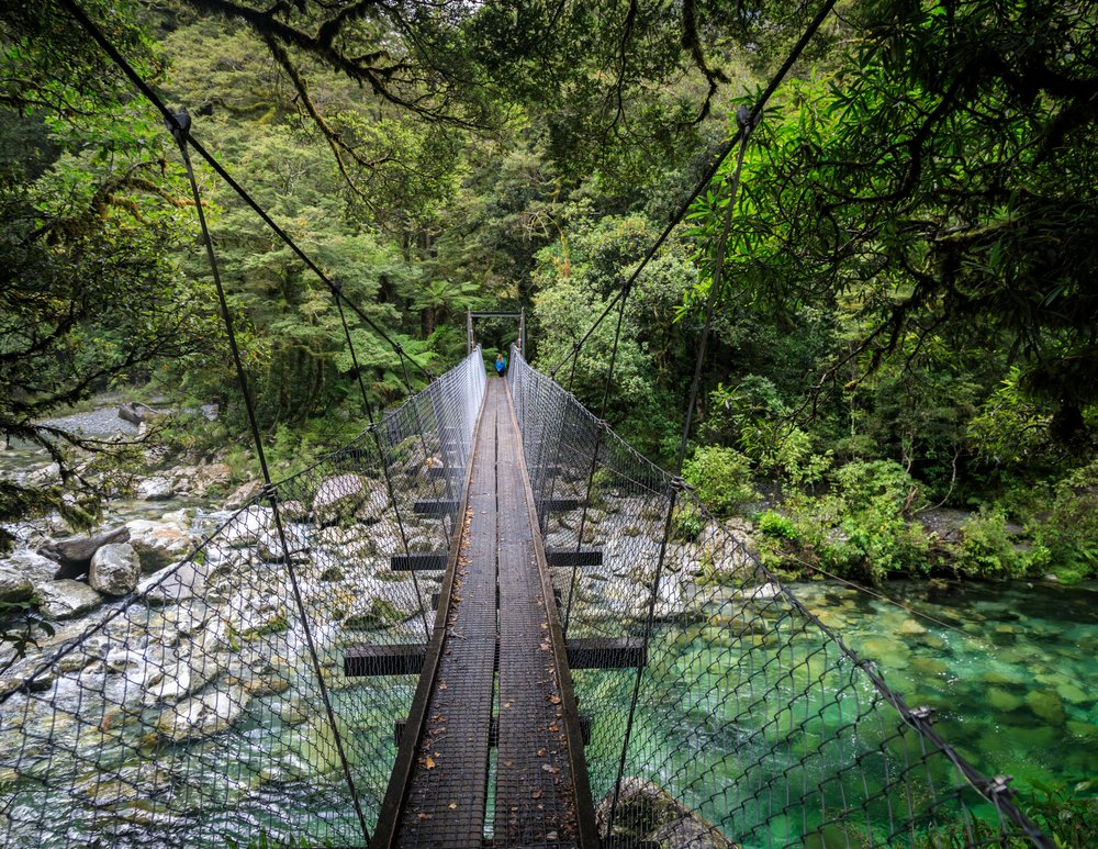 The bridge at Giant Gate Falls, Milford Track