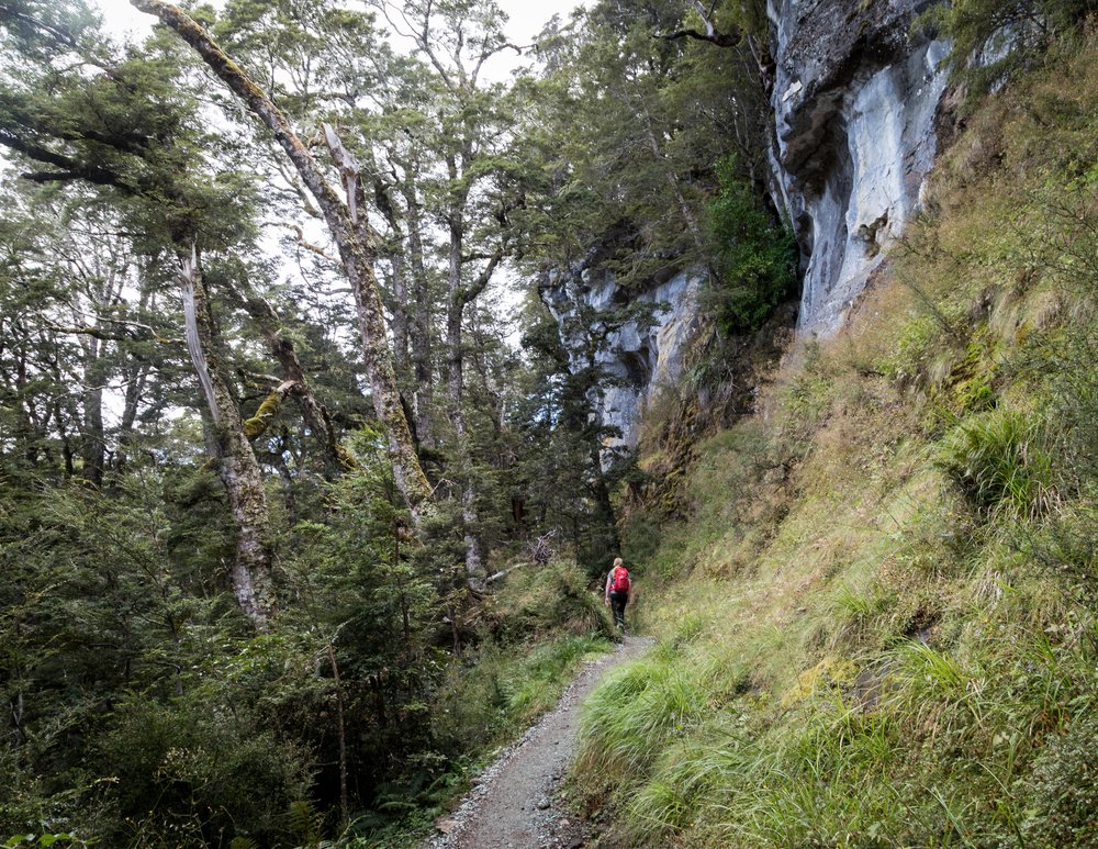 The Kepler Track: Limestone Bluff