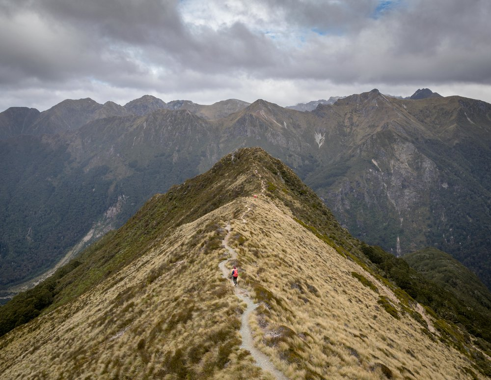 Views on the Kepler Track