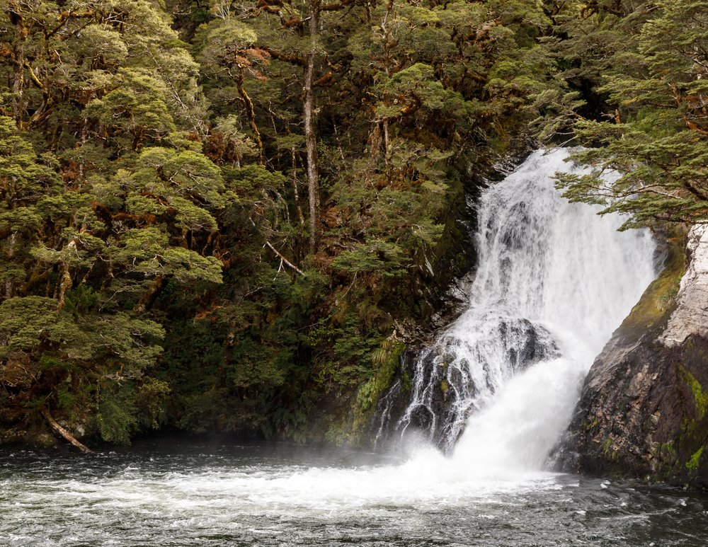 Iris Burn Waterfall, The Kepler Track