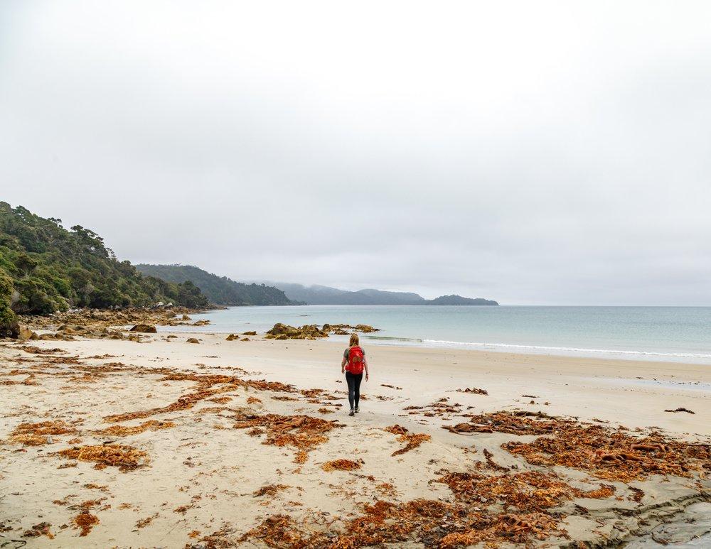 Lee Bay at the start of the Rakiura Track