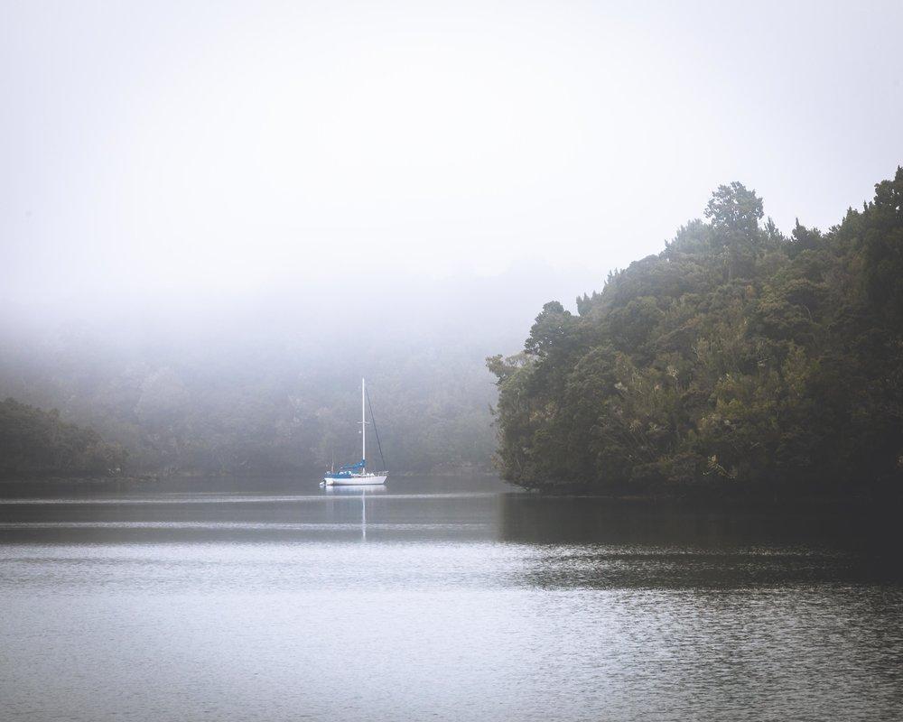 Foggy water on the Rakiura Track