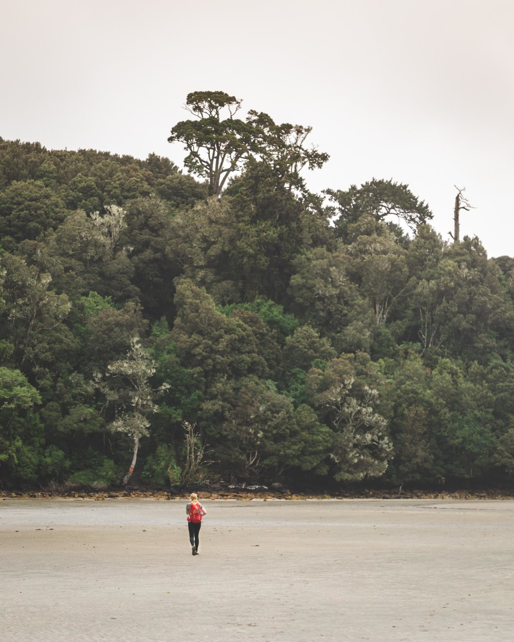 The start of the Rakiura Track, Stewart Island