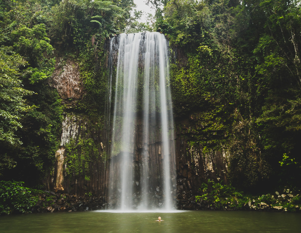 Millaa Millaa Waterfall, Cairns in Queensland