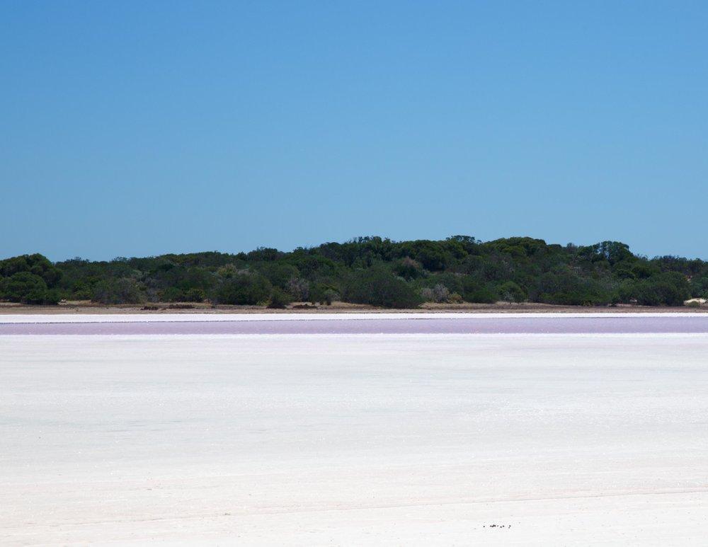 Pink Lake in Coorong