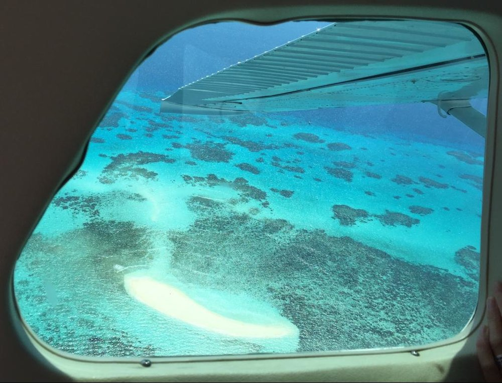 Scenic flight over the Great Barrier Reef From Cairns: Vlassof Cay