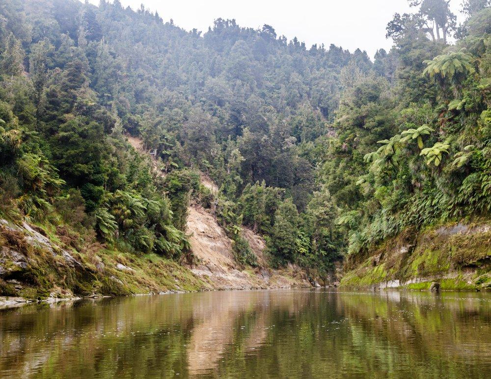 The Whanganui River - Whanganui Gorge