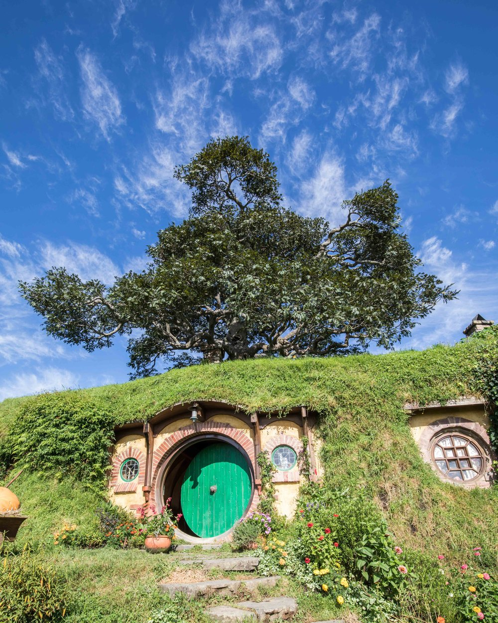 Instagrammable spots in New Zealand: Hobbiton