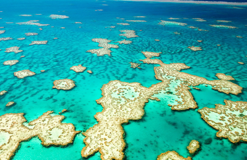 Hardy Reef, The Whitsundays, Queensland