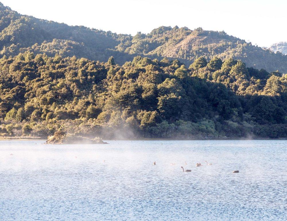 Getting to Lake Waikaremoana
