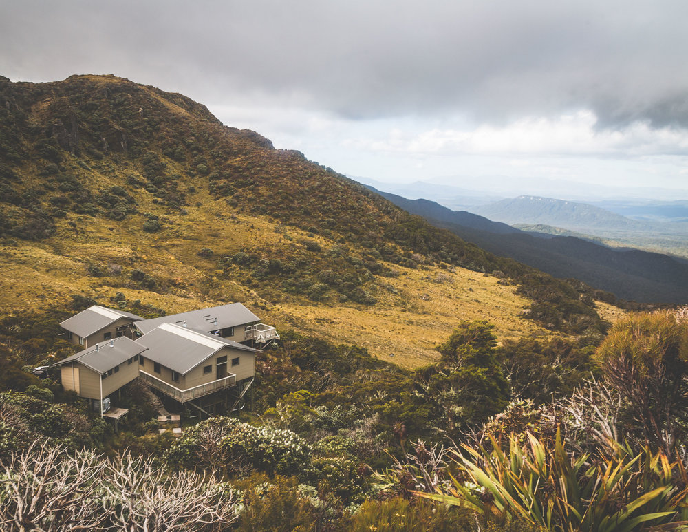 Huts on the Hump Ridge Track