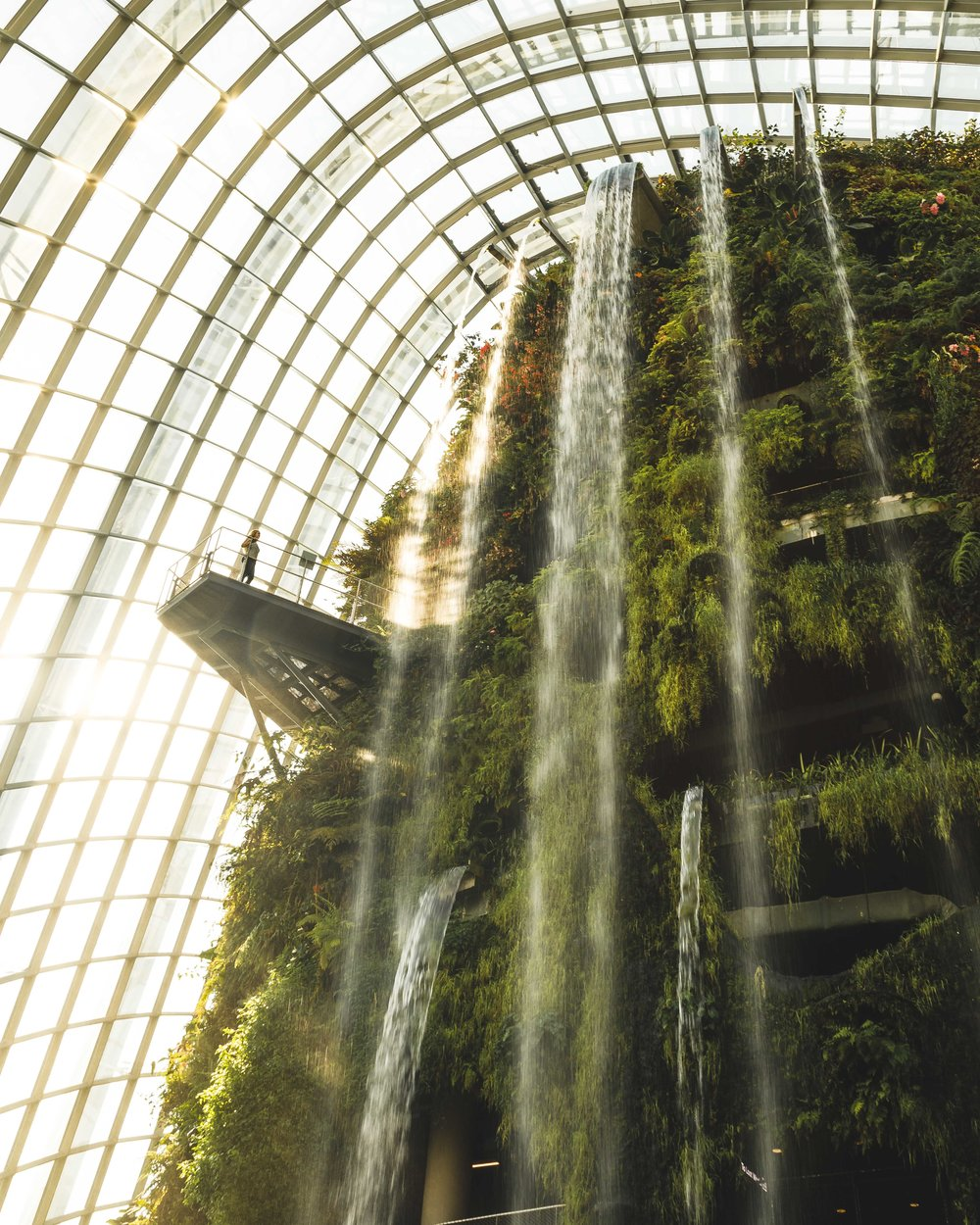 Instagrammable Spots in Singapore: The Cloud Forest