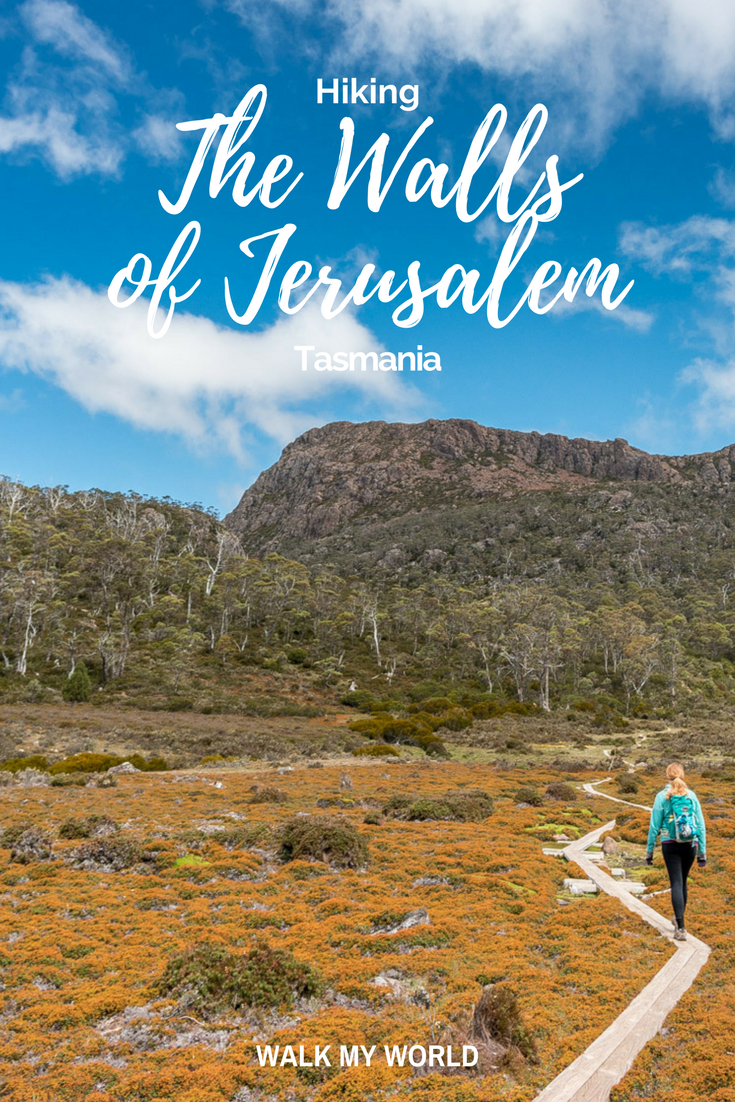 The Walls of Jerusalem isn't for the faint hearted: it's a 800m climb across a 20km return hike! Check out why this is one of our favourite hikes in Australia.