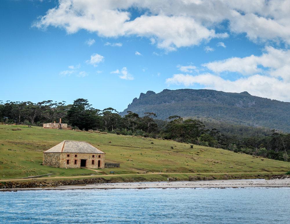 Two Weeks Tasmania Itinerary: Maria Island