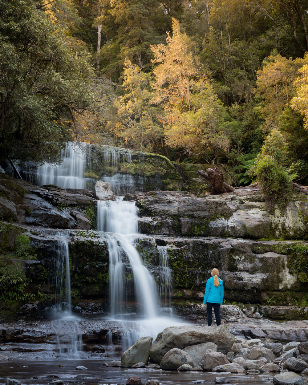 Two weeks Tasmania Itinerary: Liffey Falls