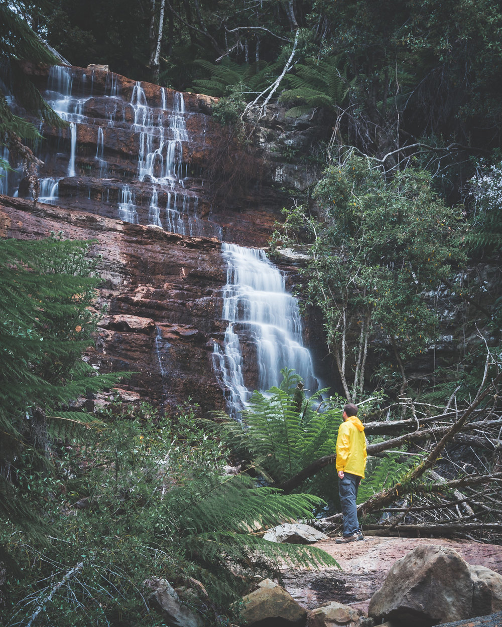 2 week Tasmania Itinerary: West Morland Falls