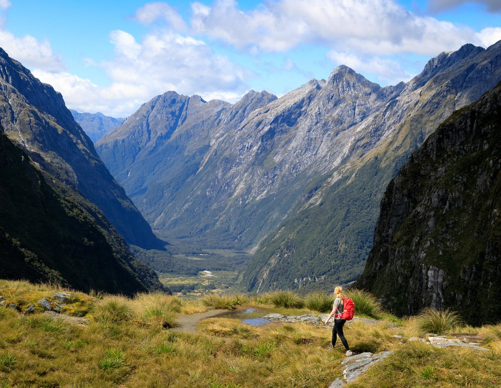 Which Great Walk is for you: The Milford Track
