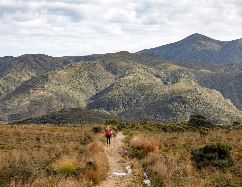 Which Great Walk is for you: The Heaphy