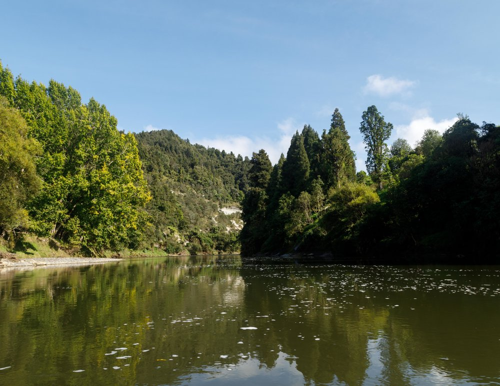 Which Great Walk is for you: The Whanganui Journey