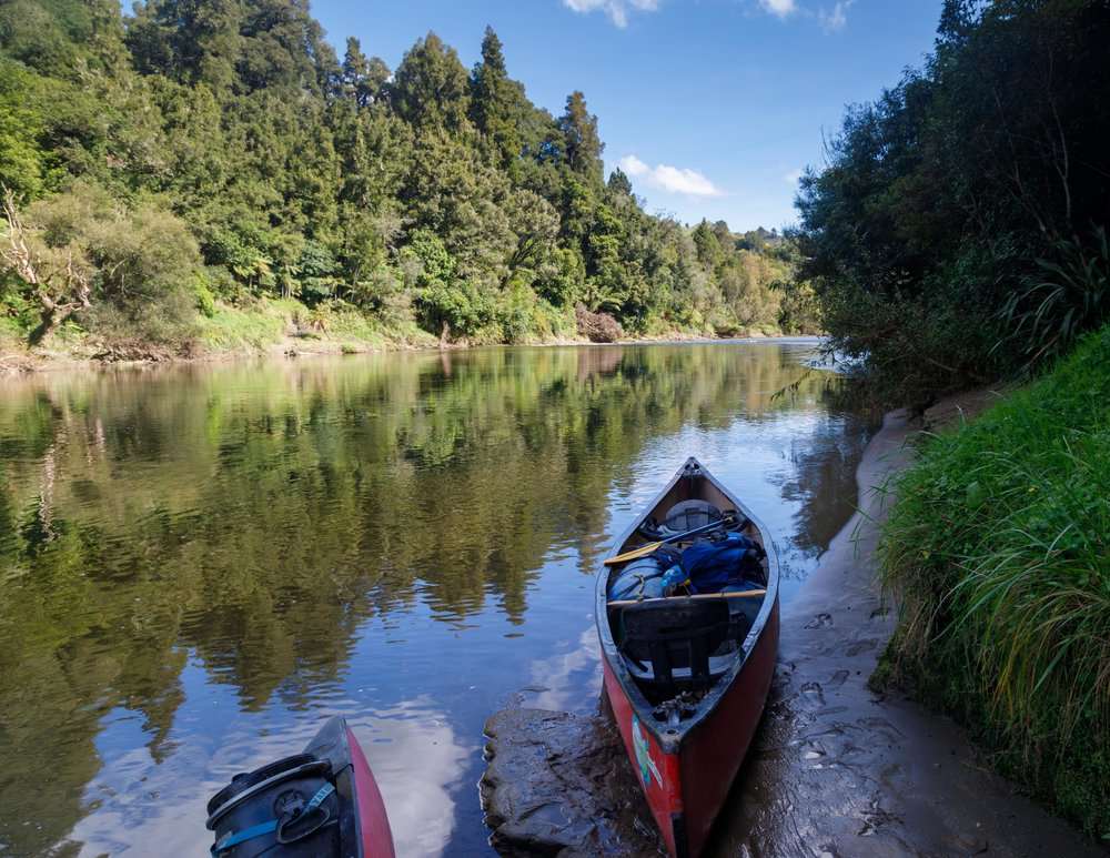 The easiest Great Walk of New Zealand: Whanganui Journey