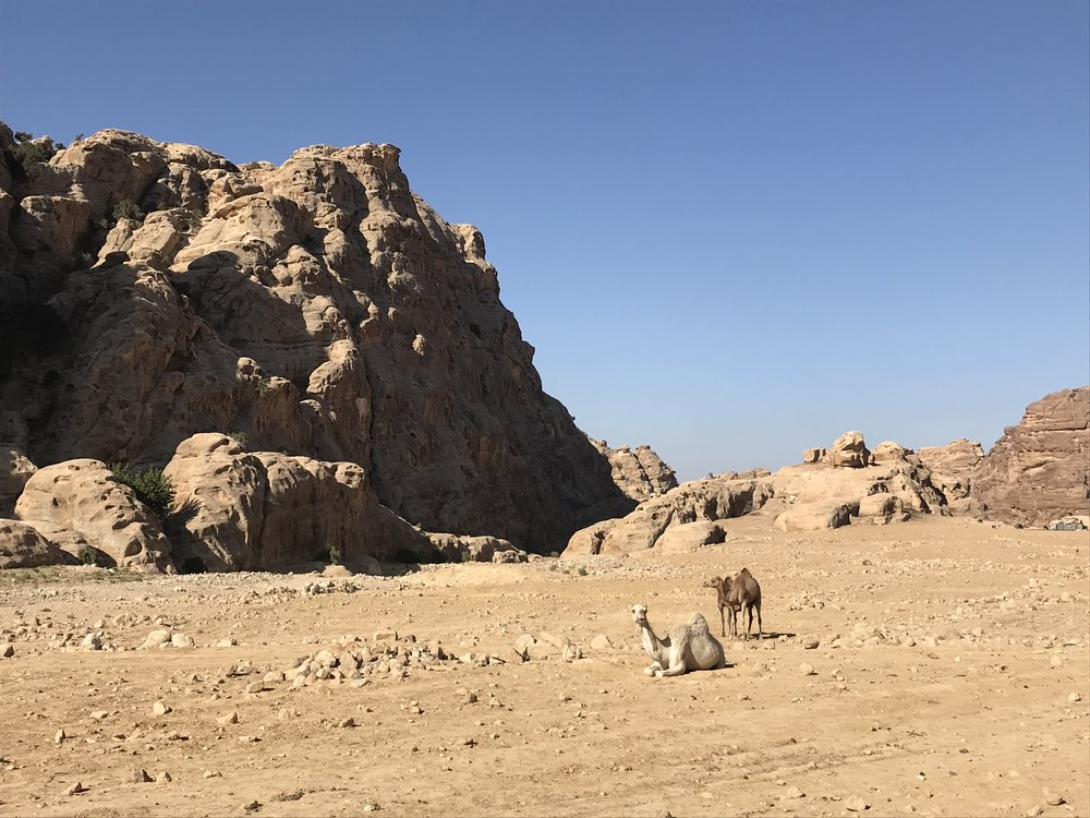 Unmissable places in Jordan - Little Petra to Petra Walk