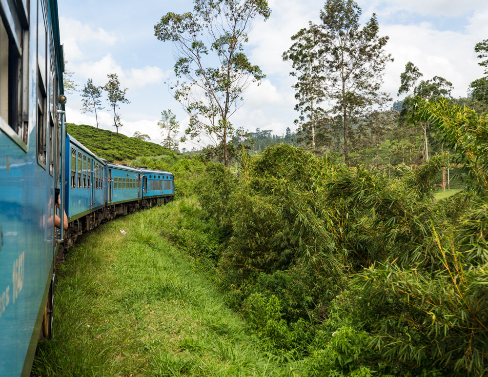 Best things to do in Kandy - Get the train to Nuwara Eliya