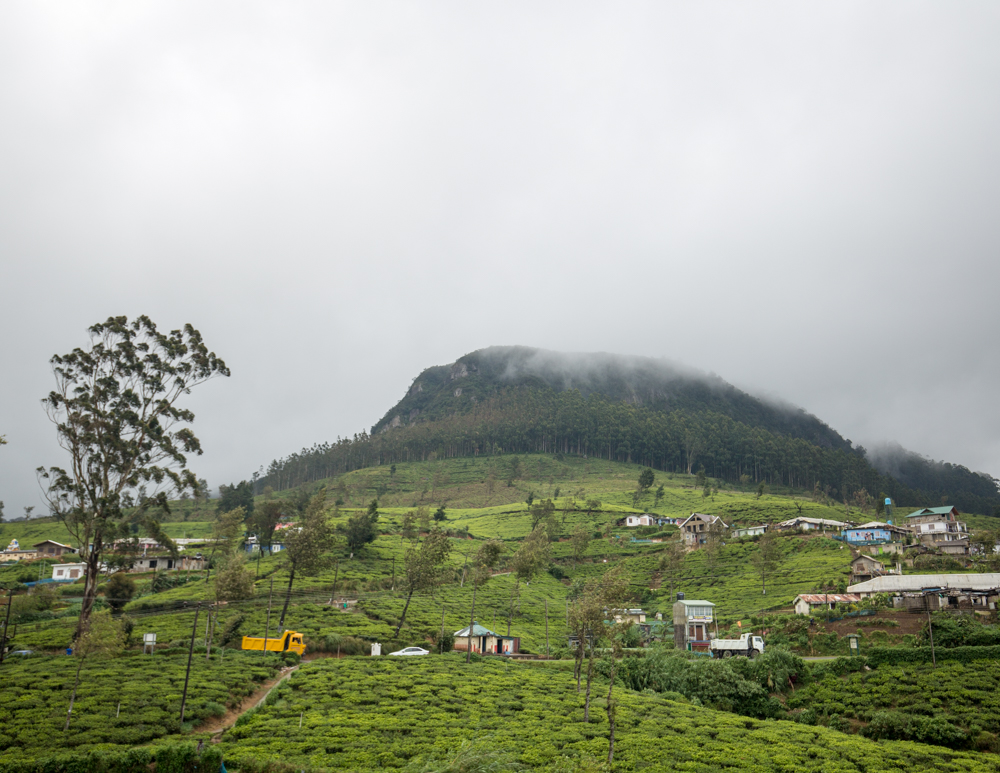 Places to visit in Nuwara Eliya - The mountain near Pedros