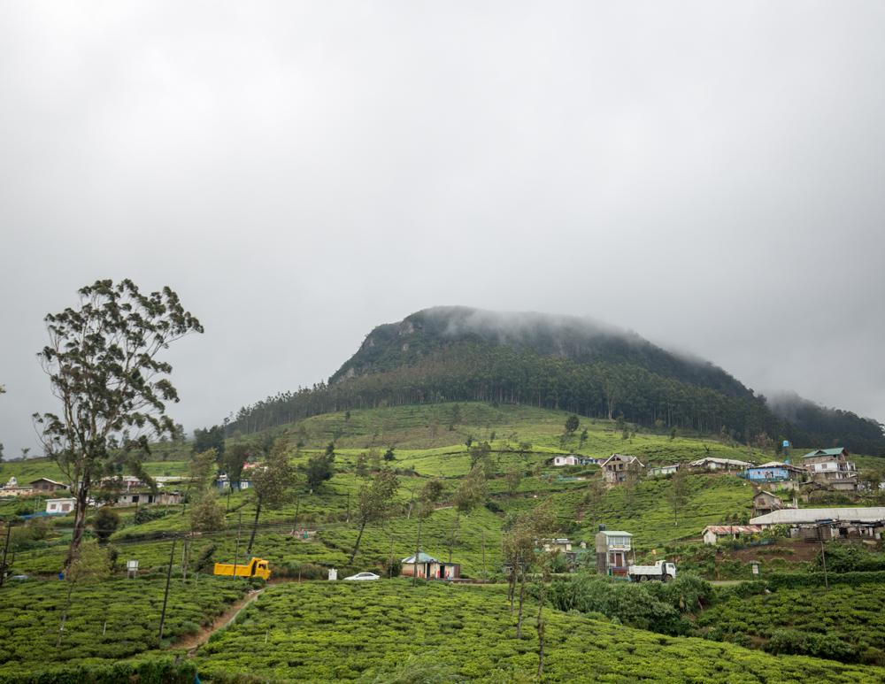 Places to visit in Nuwara Eliya - The mountain near Pedros