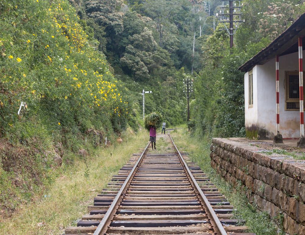 Idalgashinna to Haputale Railway Walk: The old disused train station