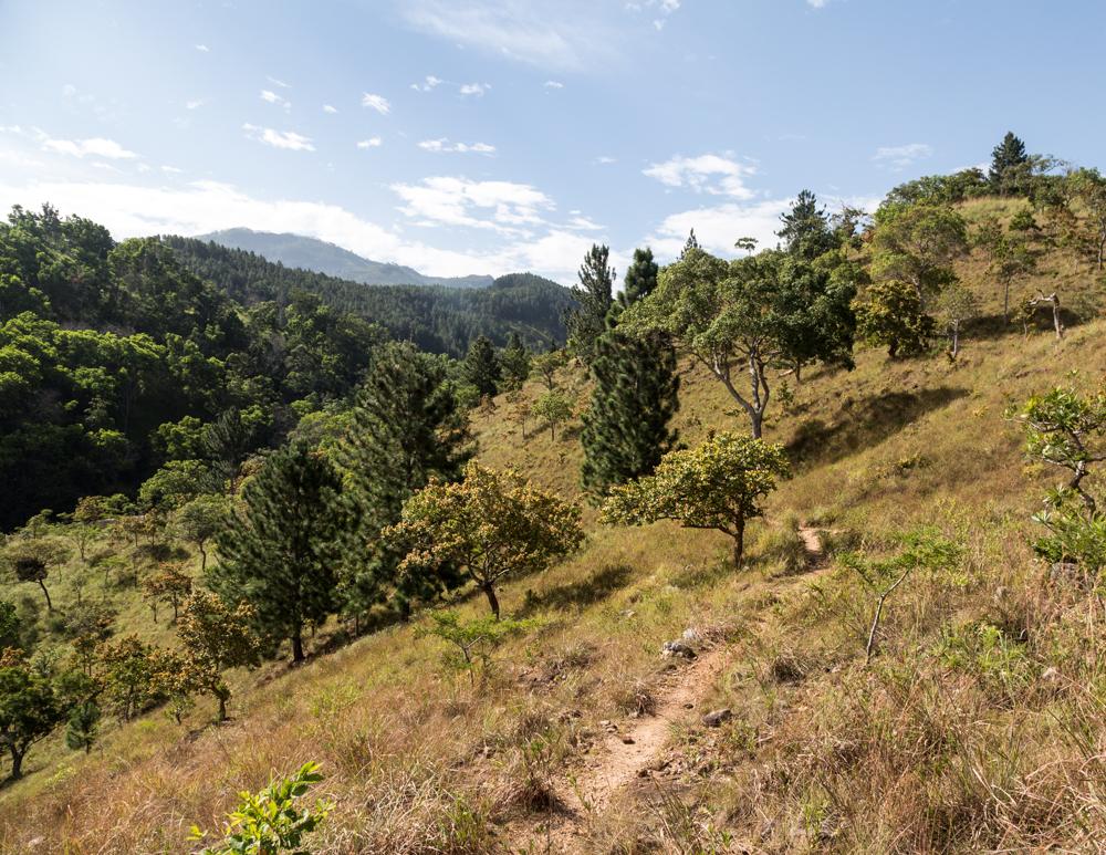 Ella to Diyaluma Falls: Starting the loop
