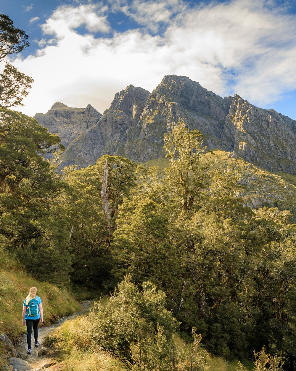2 week New Zealand South Island Itinerary: The Routeburn