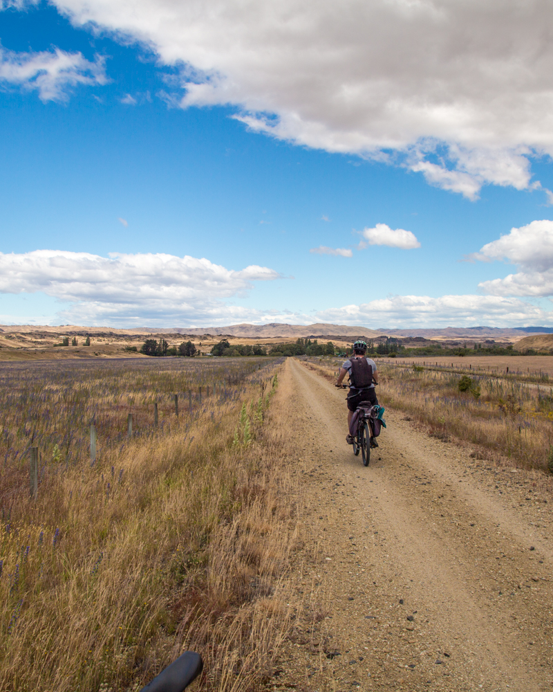 2 week New Zealand South Island Itinerary: Otago Rail Trail