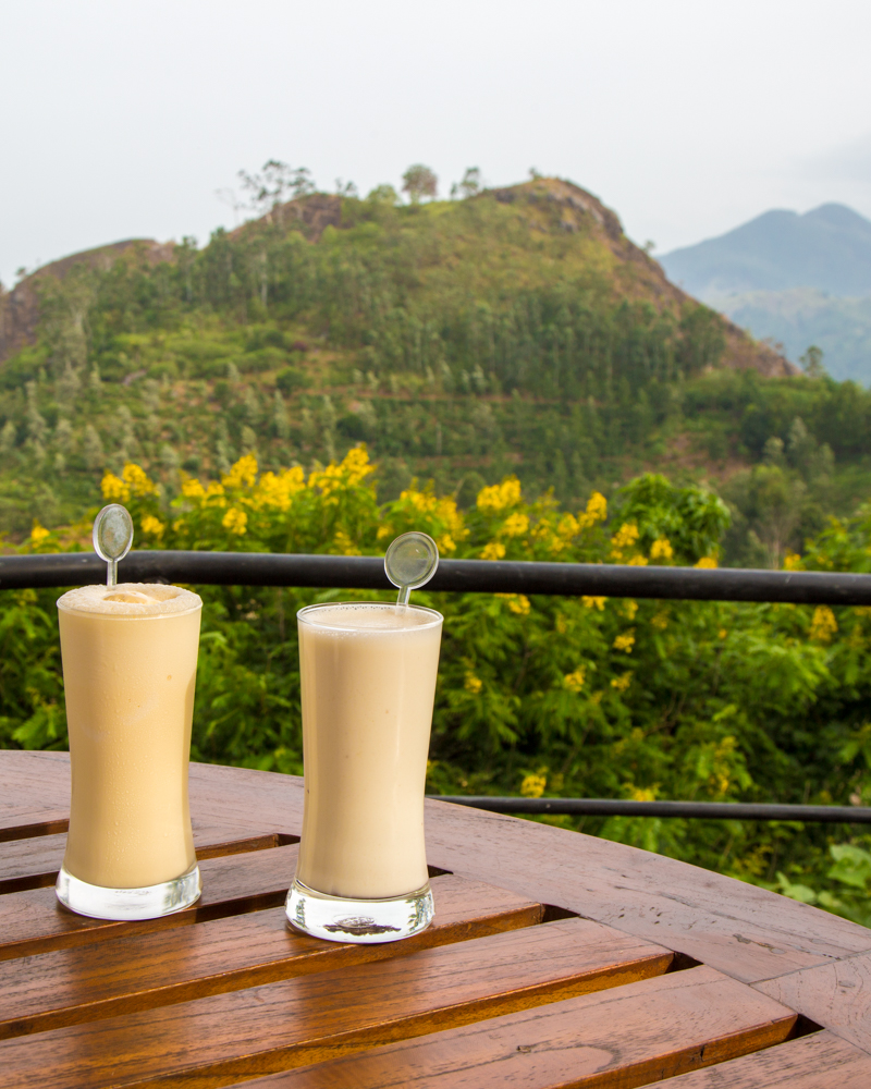 Best things to do in Ella: drink with a view