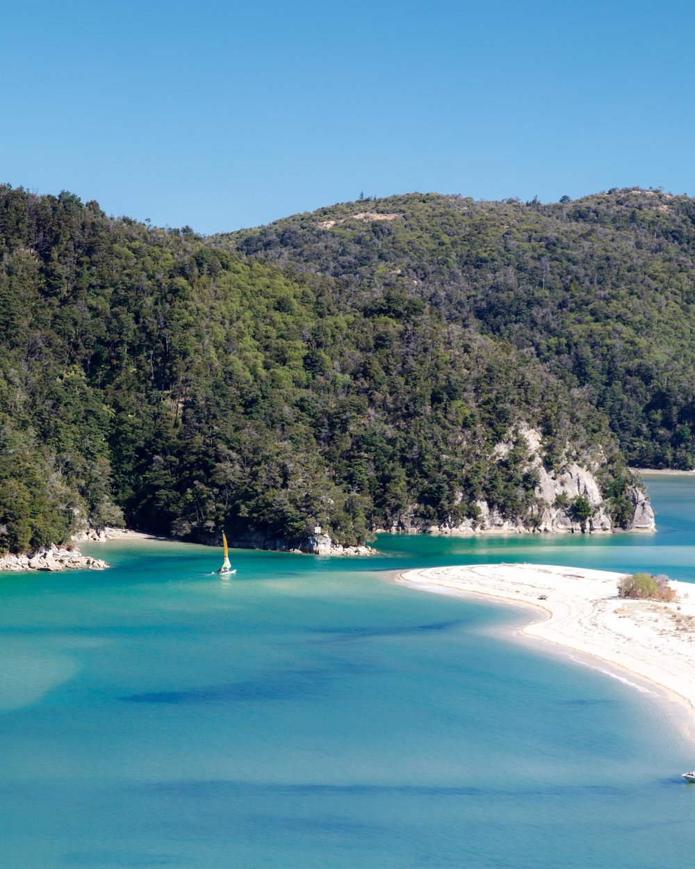 2 week New Zealand South Island Itinerary: Abel Tasman Coast Track