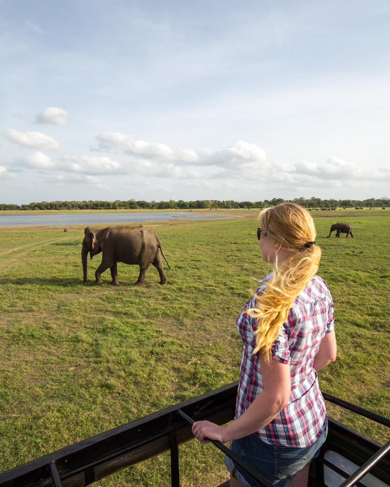Instagrammable spots in Sri Lanka: Elephant Gathering