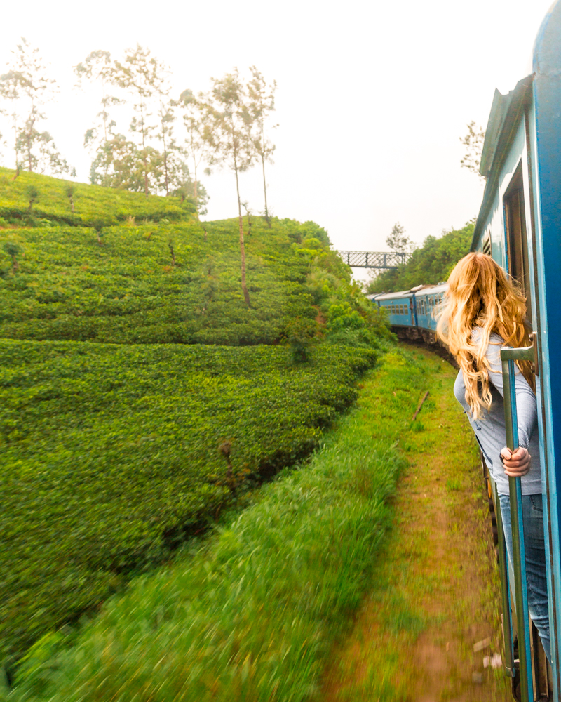 Sri Lanka Itinerary 2 weeks: Kandy to Nuwara Eliya Train