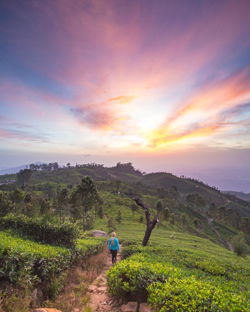 Sri Lanka Itinerary 2 weeks: Lipton's Seat