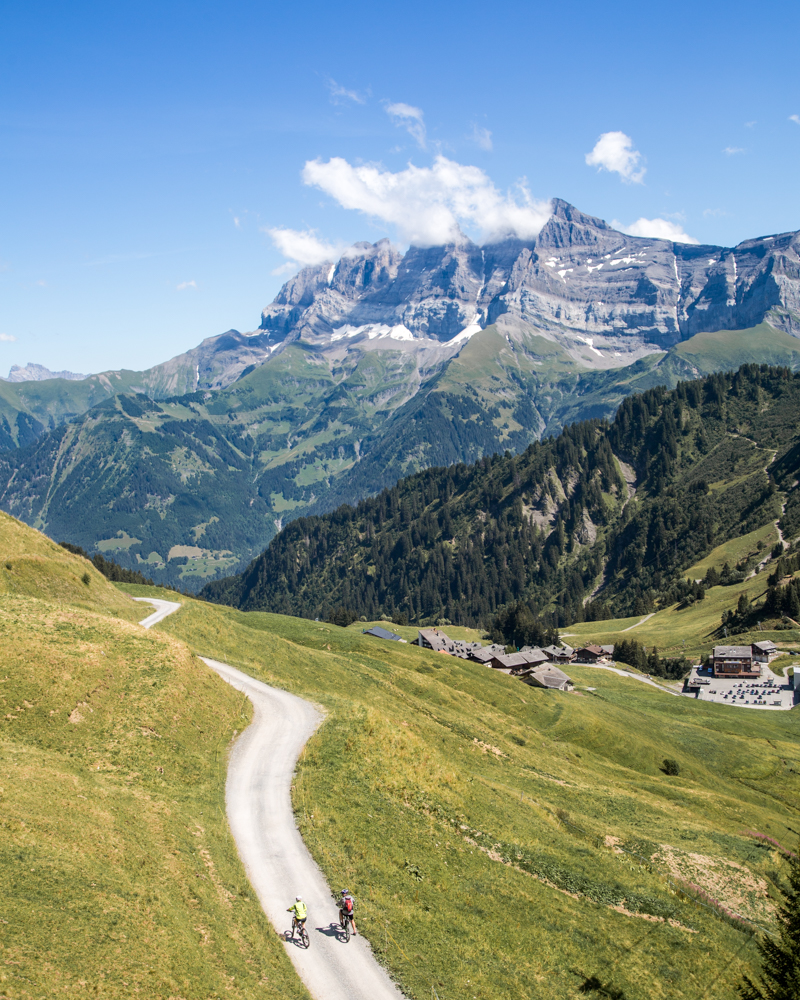 Things to do in Morzine in the Summer - Cycle a stage of the Tour De France
