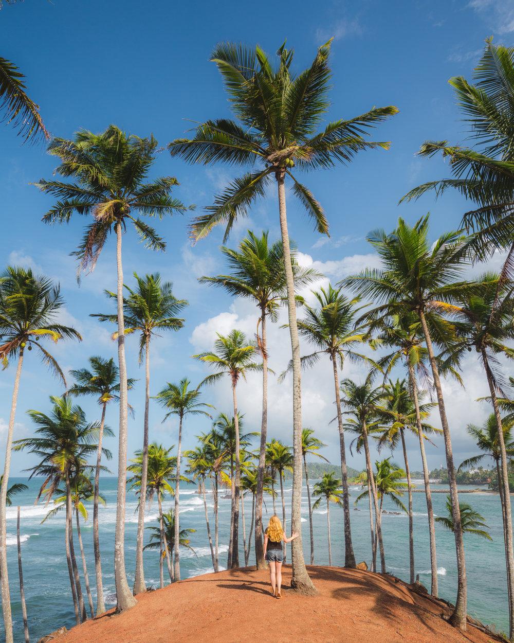 Sri Lanka Itinerary - Mirissa