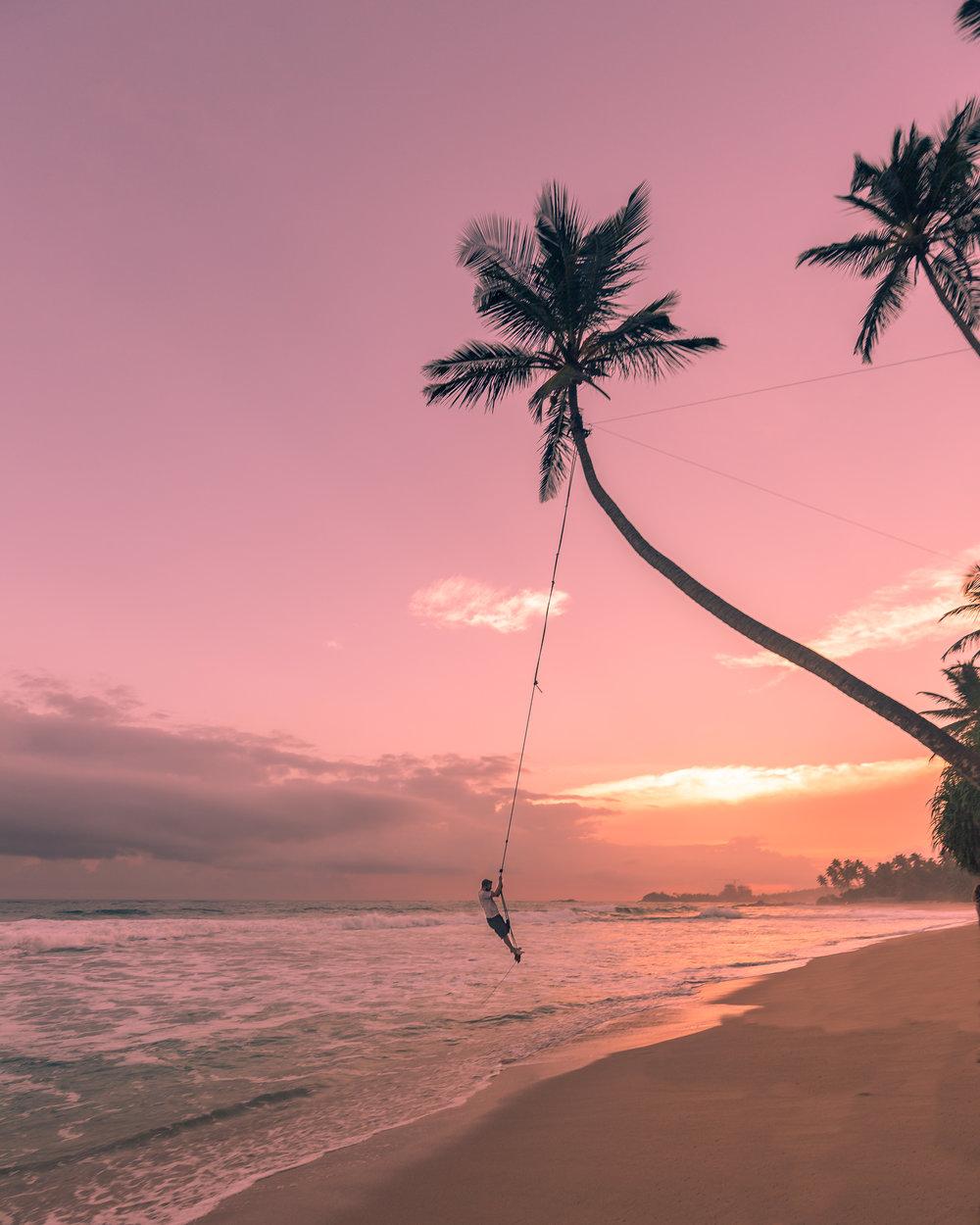 Things to do in Sri Lanka - Palm Tree Rope Swings