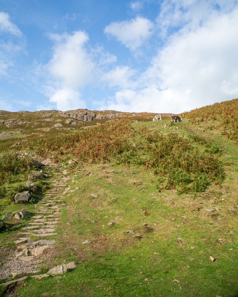 Helm Crag Walk - The Wainwright Route