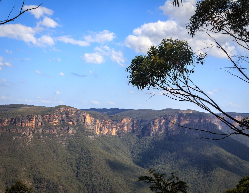 Clifftop Walk - Blue Mountains