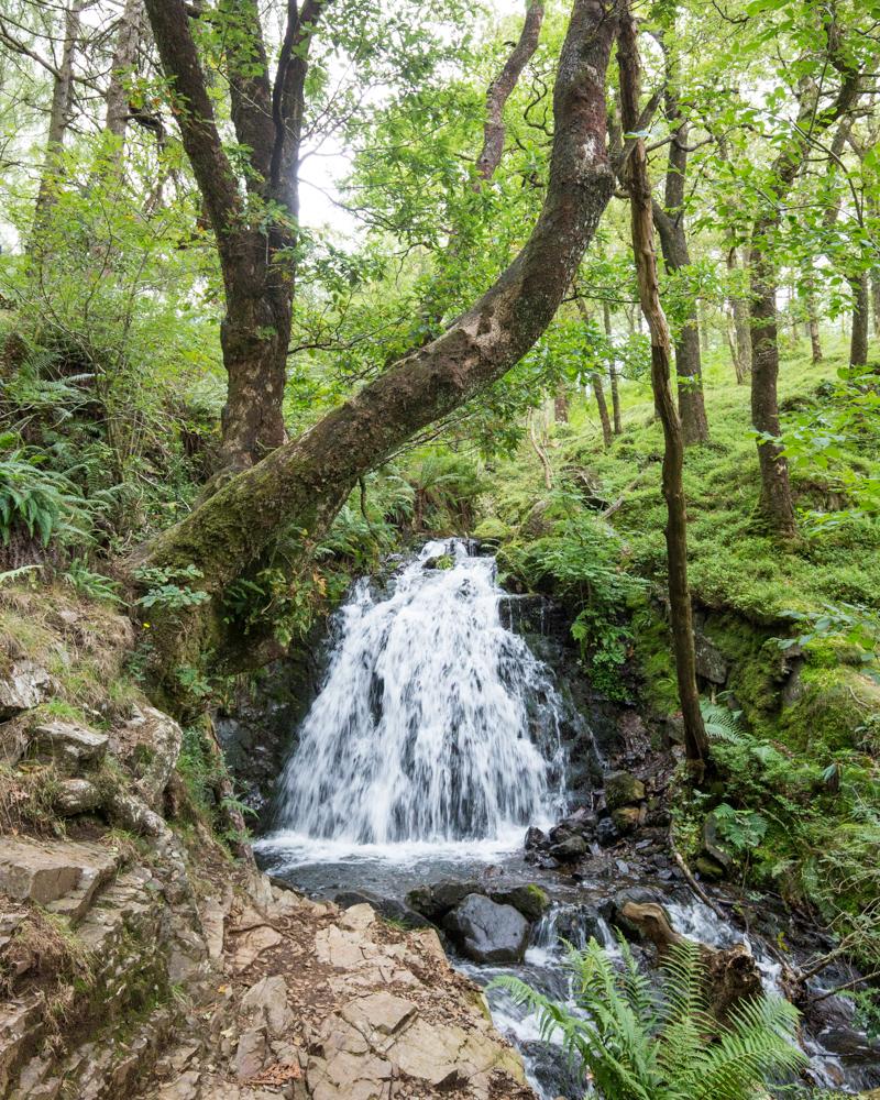 Tom Gill Waterfall to Tarn Hows Walk