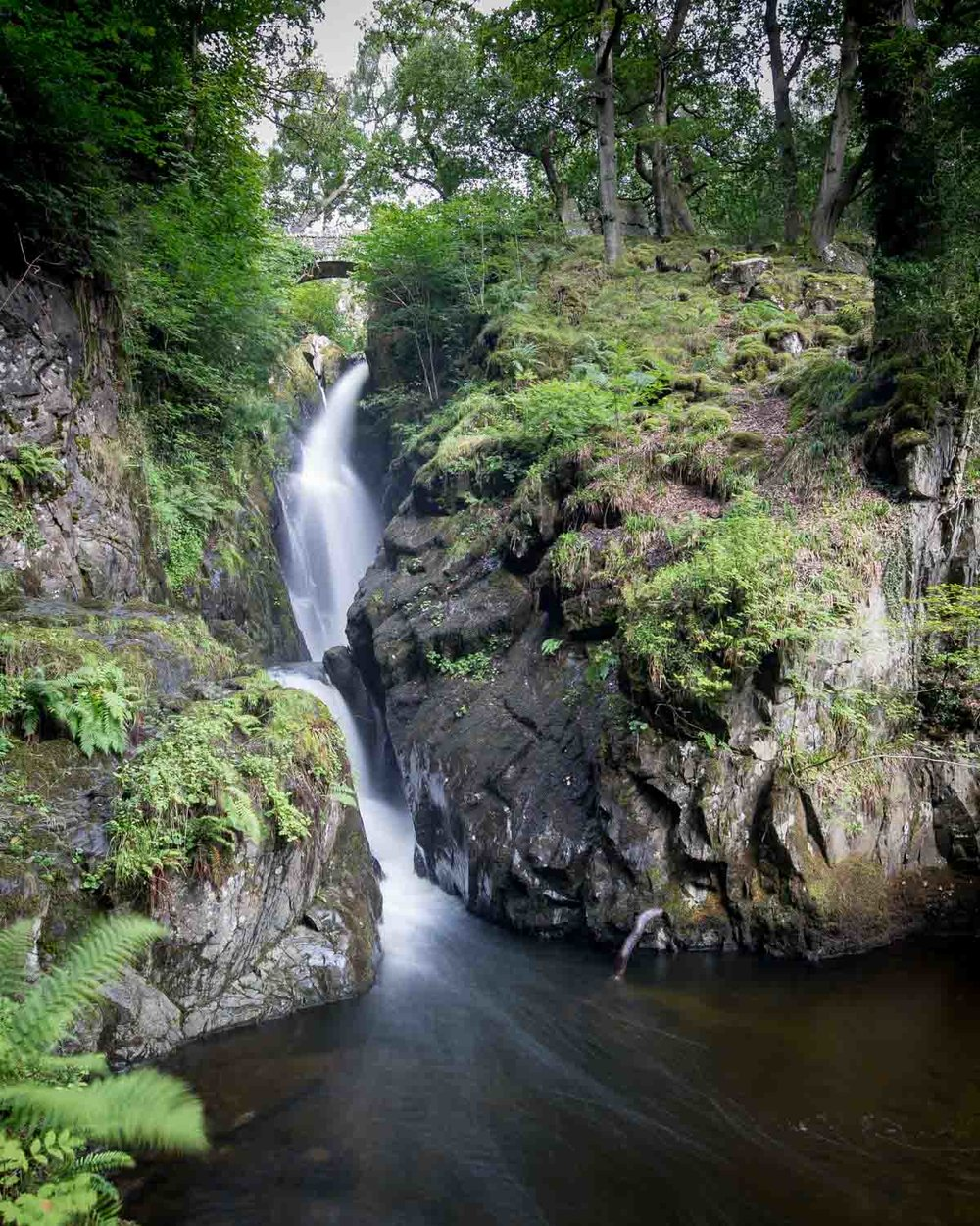 Easy Lake District Walks - Aira Force