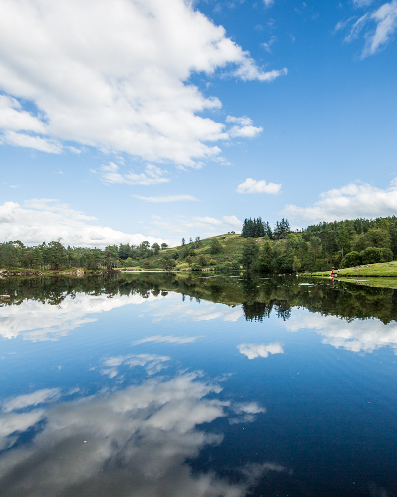 Best things to do in the Lake District - Tarn Hows