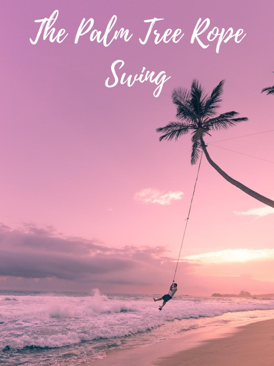 Palm Tree Rope Swing