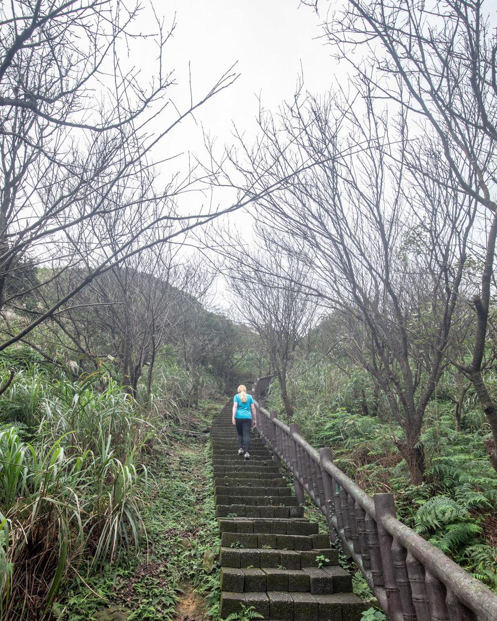 The track to Teapot Mountain in Taiwan