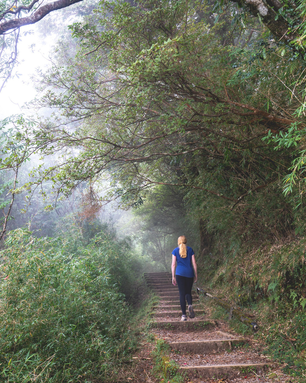Climbing uphill to Tashan Lookout in Alishan